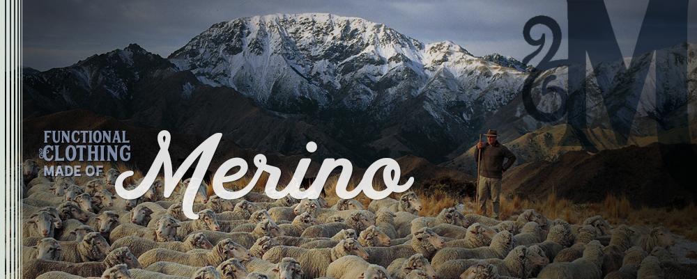 *3 Merino