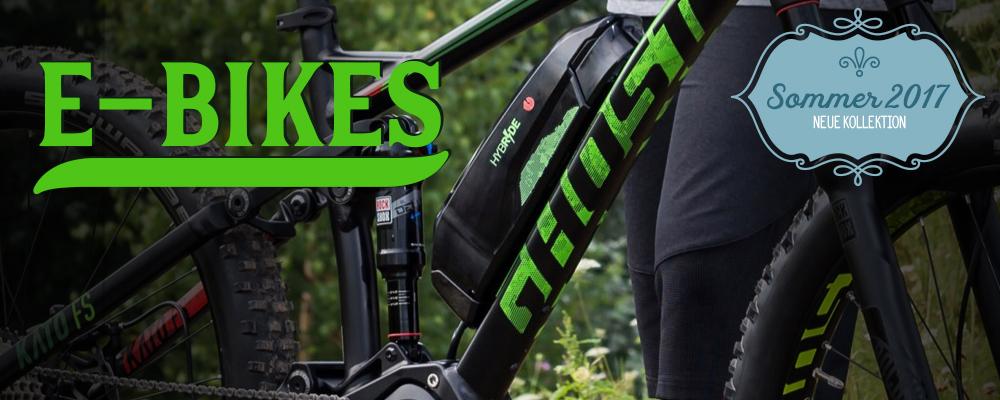 *E-Bikes