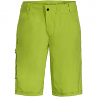 Ledro  Shorts Chute Green Herren