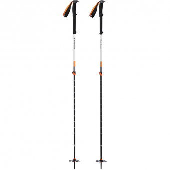 Black Diamond Expedition 2  Pole Ginger
