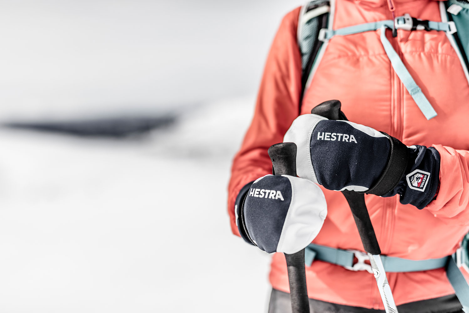 Gloves by Hestra