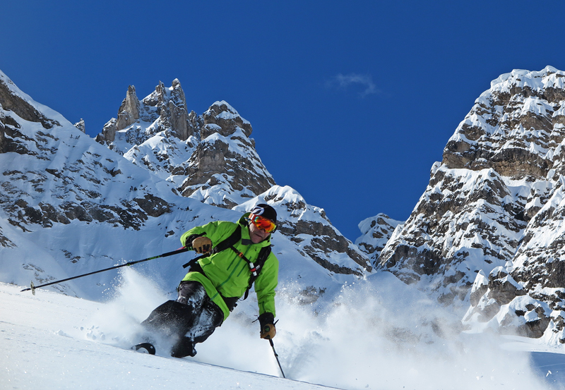 Telemark skis