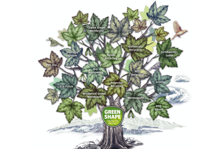GreenShape Baum